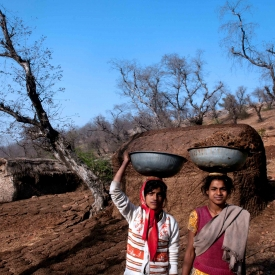 Women play the role of collection of biowaste and making dung cakes which are store din chirp and used as fuel in cooking.