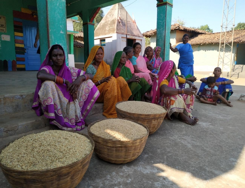 The amount of grain collected as offering by the women's group.