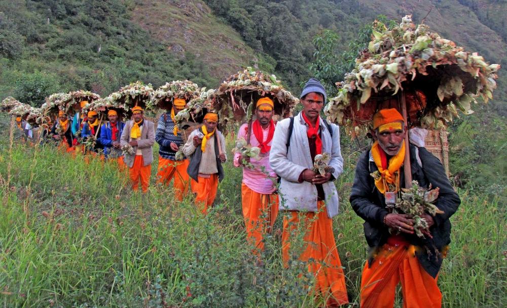 Fig.13.जात के बाद वापस डुमक गाँव पहुँचता हुआ यात्री दल| सौजन्य:देवेंद्र नेगी एवं लक्ष्मण सिंह