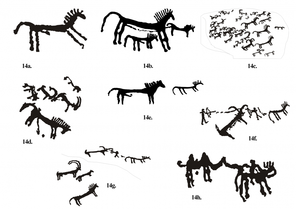 Fig. 14. (a–h) Figures of horses along with hunting scenes are common on the Sasoma site. Such a stylistically distinct representation of horses is not found elsewhere in Ladakh