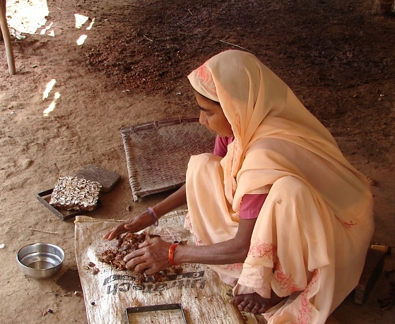 Woman preparing to make tamarind bricks