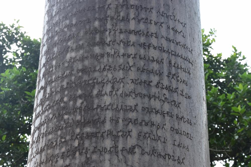 चित्र ५. पश्चिमी चम्पारण स्थित लौरिया अरेराज के अशोक स्तंभ पर पाली भाषा में लिखा संदेश (फोटो:अफ़रोज़ आलम साहिल, अक्टूबर, 2019)