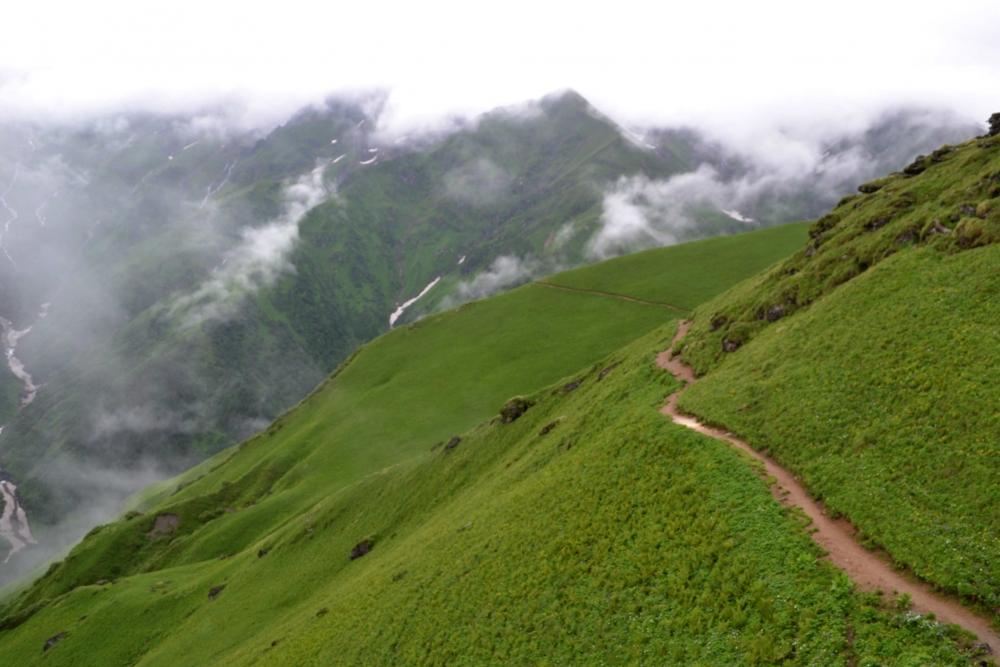 Fig.7. उच्च हिमालयी क्षेत्र में भेड़ों के चलने से बनी पगडंडी| सौजन्य:देवेंद्र नेगी एवं लक्ष्मण सिंह