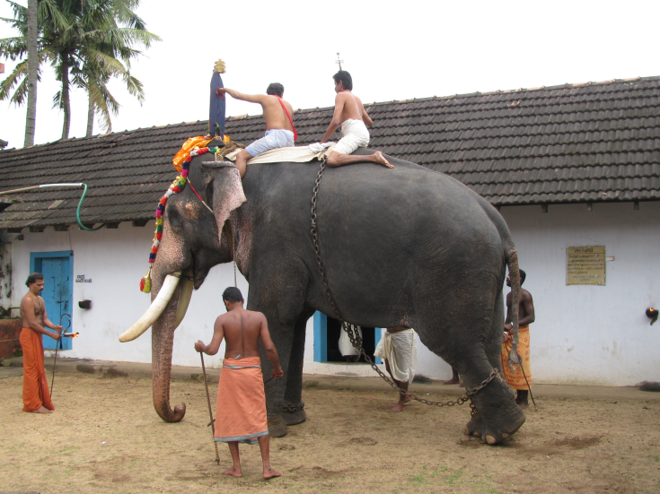 Rituals held as part of Moosari Utsavam. (Image Courtesy: Sudheer Kailas)
