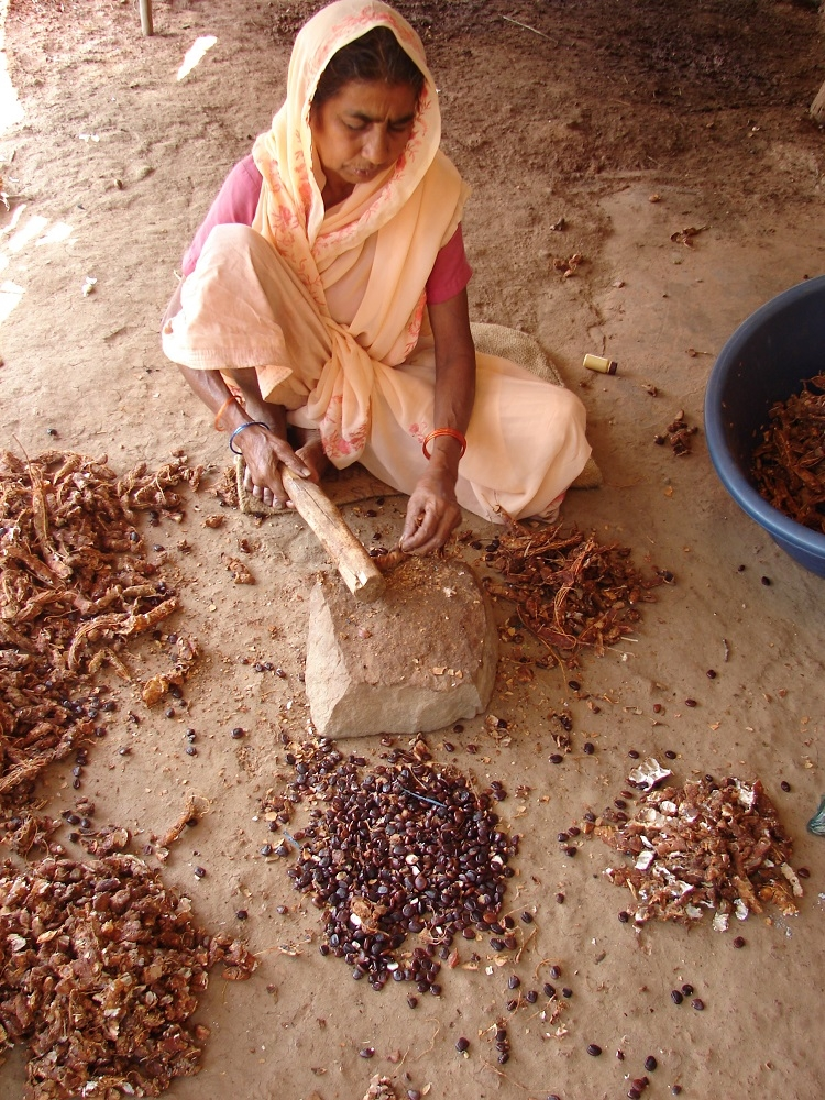 A woman making tamarind bricks
