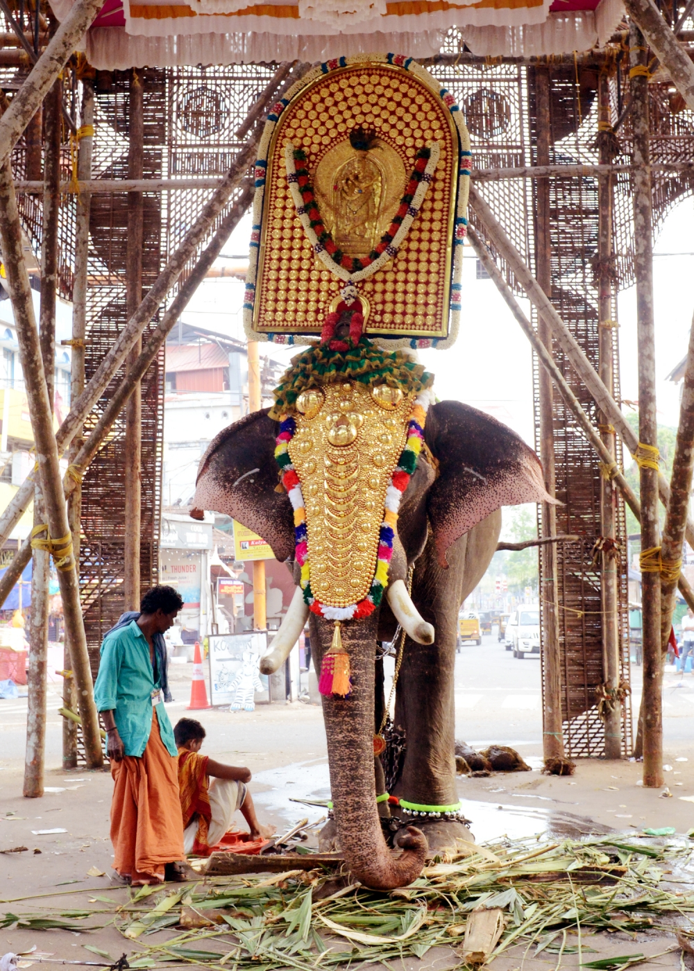 Fully decorated elephant. Image Courtesy: Anil Vijay.