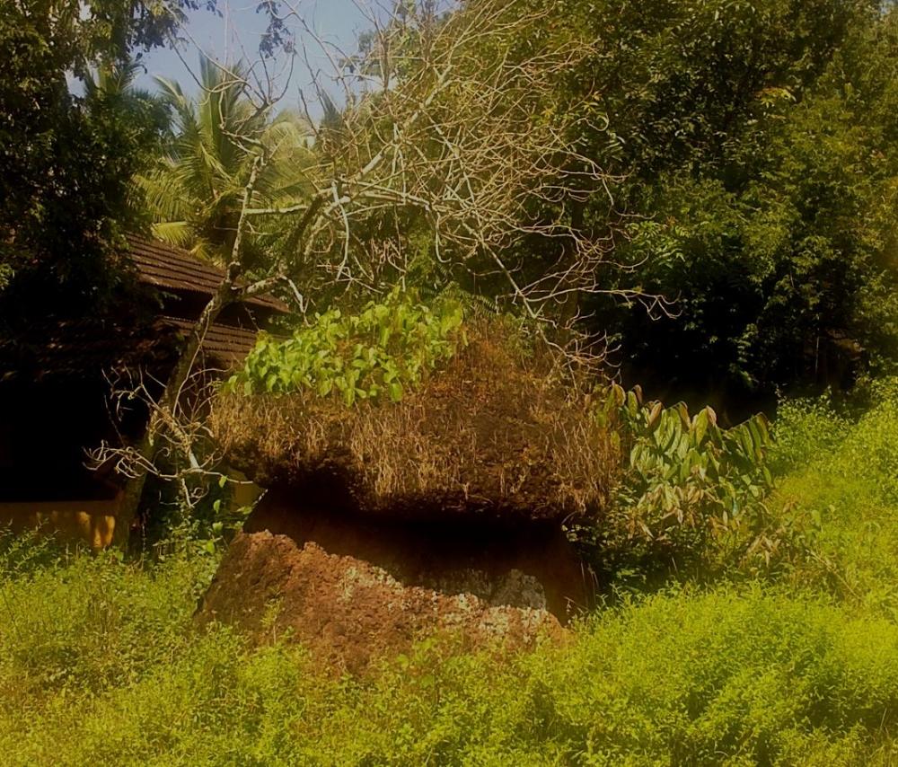 Kudakkal, Thavanur, Malappuram