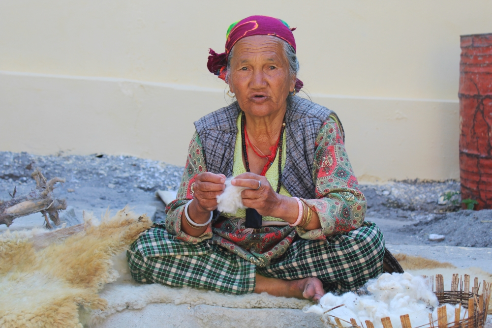 Fig 8: An elderly Bhotiya woman scouring, combing, and cleaning the wool before the process of carding
