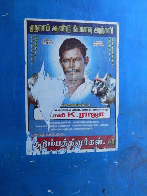Poster of Karthiga's deceased father depicted with his bulls, Usilampatti