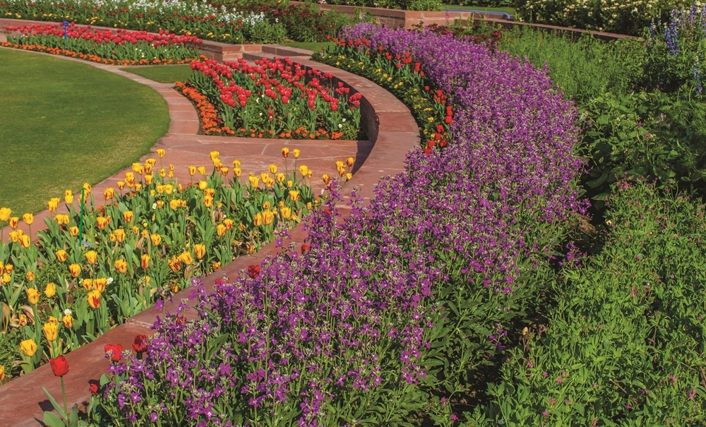 Flowerbeds in the Rashtrapati Bhavan Mughal Gardens, Photo by Narendra Bisht, courtesy Sahapedia.org