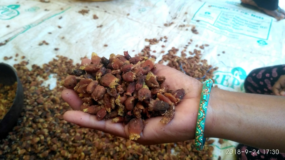 Mahua at the local haat