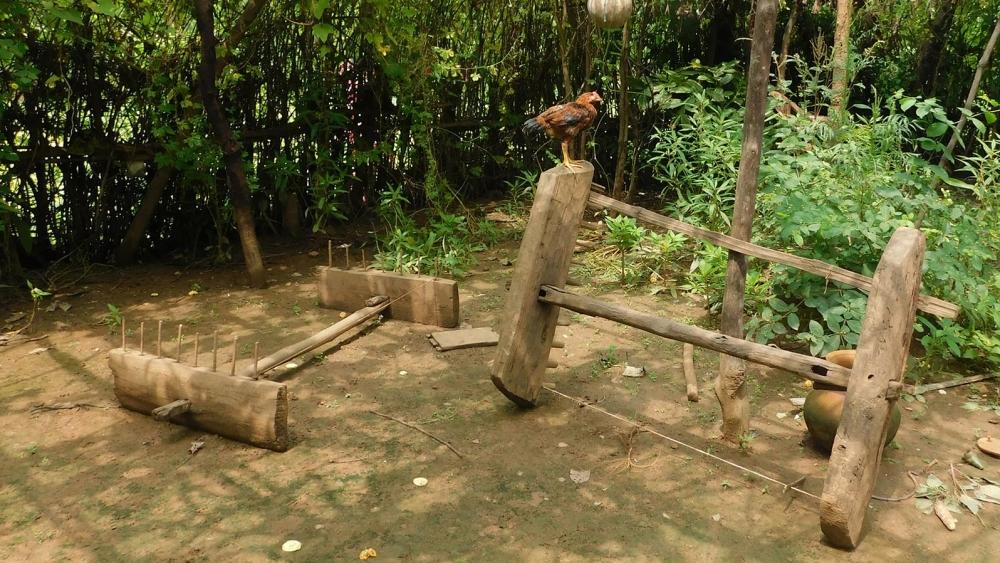 Fig.3.लुंडी-ताना - यह लकड़ी से बना औजार है जिससे कपड़े की चौड़ाई यानी 'अरज' तय की जाती है |(सौजन्य: सरोज केरकेट्टा)