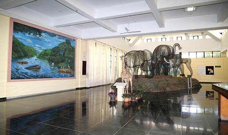 Regional Museum of Natural History Mysore_MuseumsofIndia