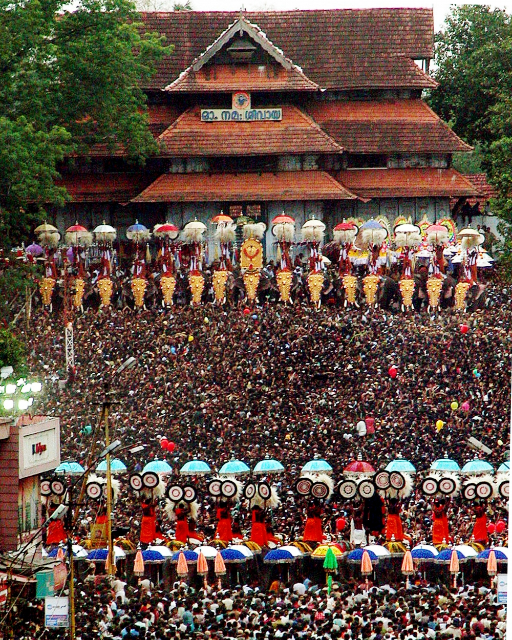 Thirty elephants stand face-to-face for Kudamattam in Thrissur Pooram. Image Courtesy: Anil Vijay.