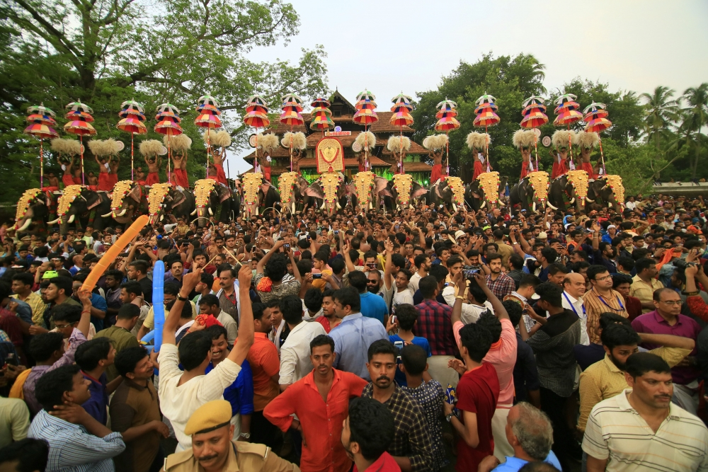A view of the Thrissur Pooram. Image Courtesy: Anil Vijay.