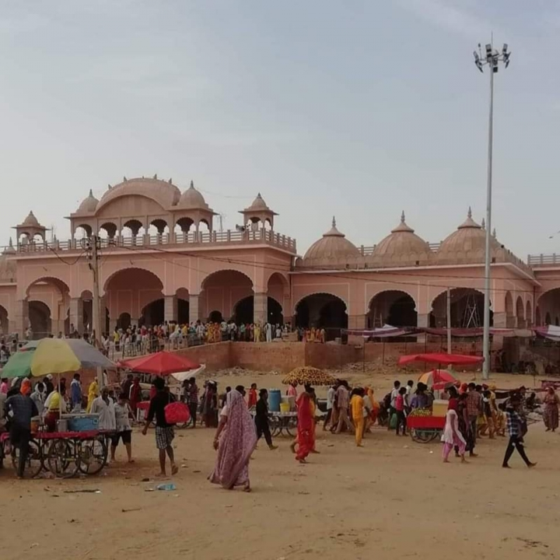 Gogaji Temple in Rajasthan (Courtesy: Dr Satpal Singh)