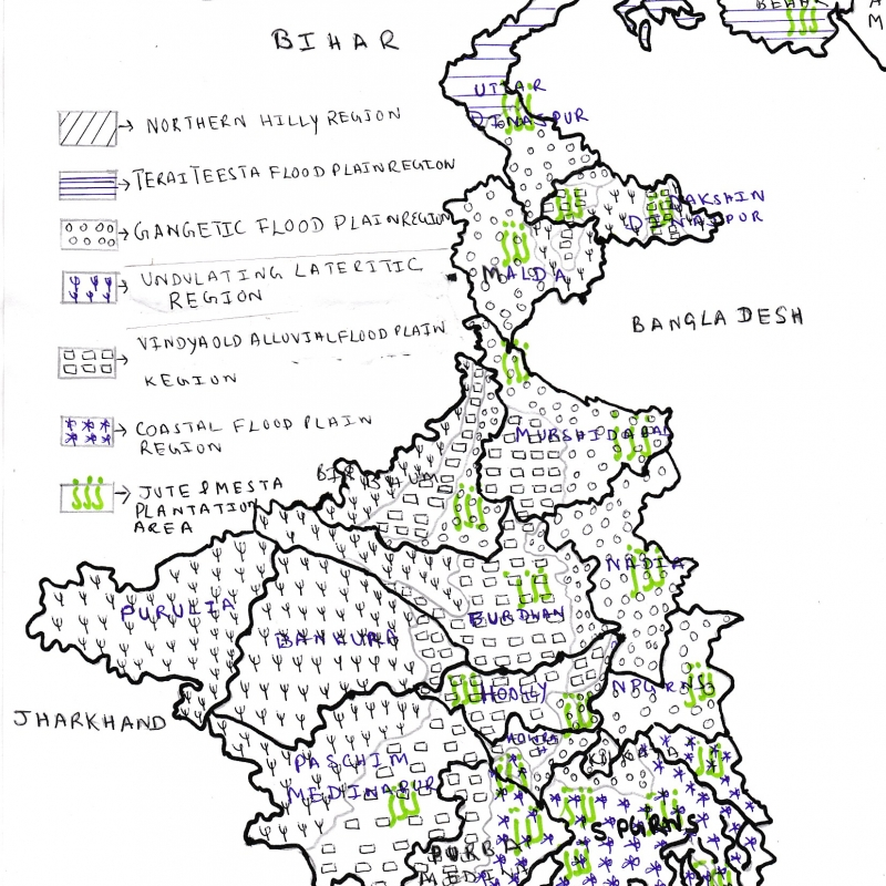 Schematic Map of Jute Production in West Bengal