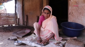Embedded thumbnail for From Pod to Packet: Processing Tamarind in Bastar