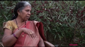 Embedded thumbnail for Gondi Language and Literature: In Conversation with Ushakiran Atram
