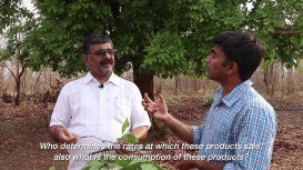 Embedded thumbnail for The Landscape of Lac Production in Bastar: a conversation between Arunpol Seal and Basant Yadav, President, Sahabhagi Samaj Sevi Sanstha